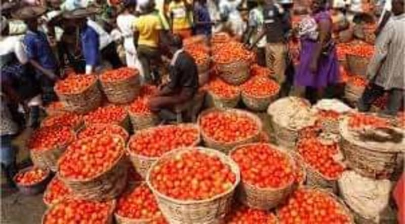Northerners Begin Diversion Of Food Items To Niger And Cameroon