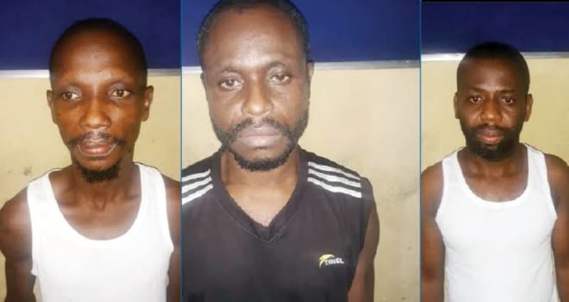 Sacked Driver Connives With Gang To Kidnap Boss' Wife