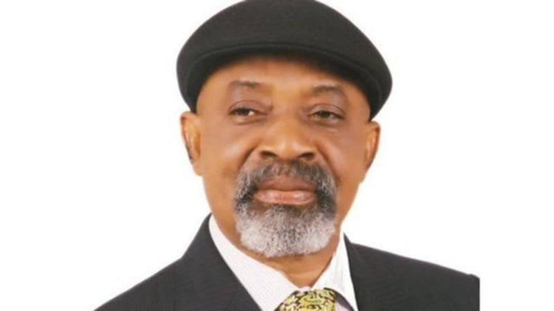 We Did Everything Possible To Stop Doctors' Strike - Ngige