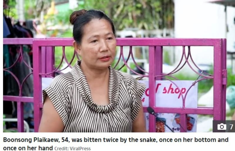 Woman Bitten On Her Backside By 7ft Python  As She Sat On Toilet In Thailand