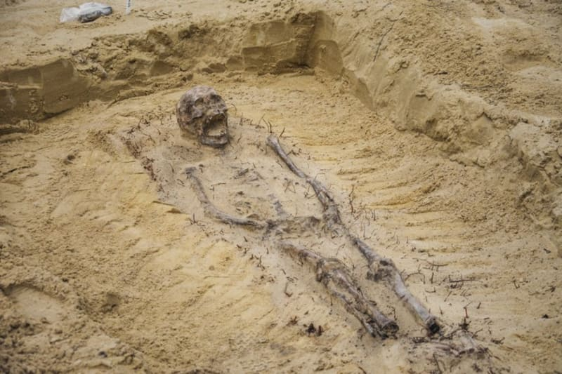 16th-Century Child Skeletons With Coins In Their Mouths Found In Poland