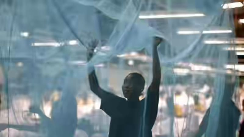 Senate Rejects Health Ministry's Proposal To Borrow ₦82bn To Buy Mosquito Nets