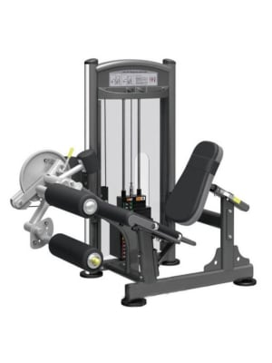 Dual Leg Extension & Leg Curl Set IT9328