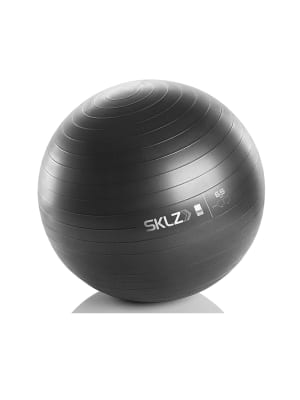 Stability Ball Pro
