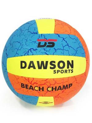 Beach Champ Volleyball