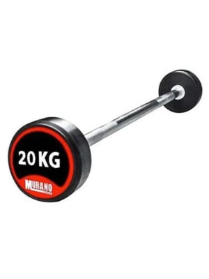 Fixed Barbell