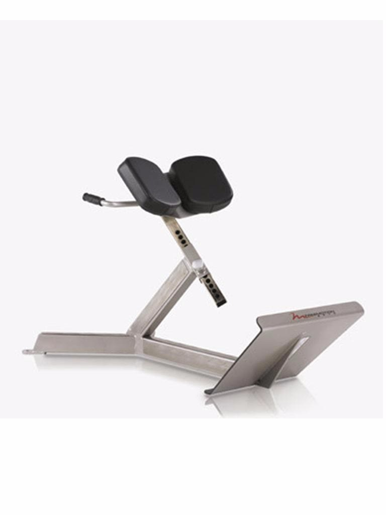 45 Degree Back Extension Bench