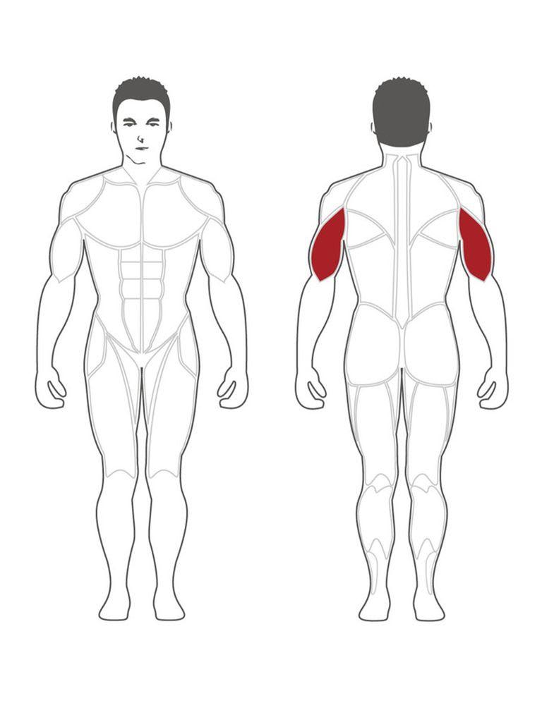 Plateload Triceps Extension (Black Pad) PLTE-BR