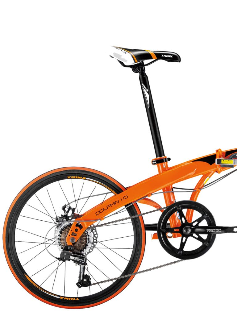 Dolphin 1.0 Bicycle