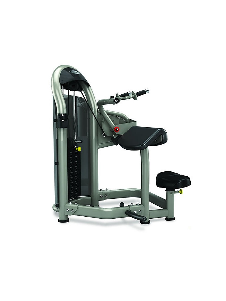 Triceps Extension - Single Station