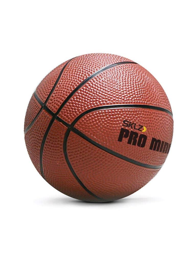 Pro Mini Hoop Ball