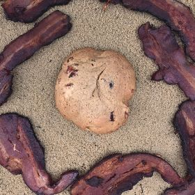 After Dark Cookies presents the Maple Baconator cookie