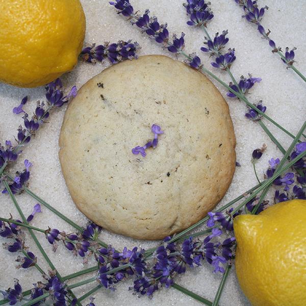 After Dark Cookies presents the Lavendoodle cookie
