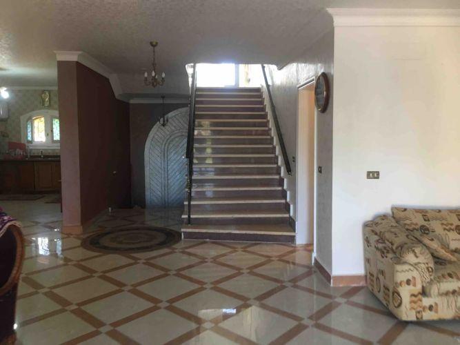Properties/4425/ljtqlw6fprjmpktvip2c.jpg