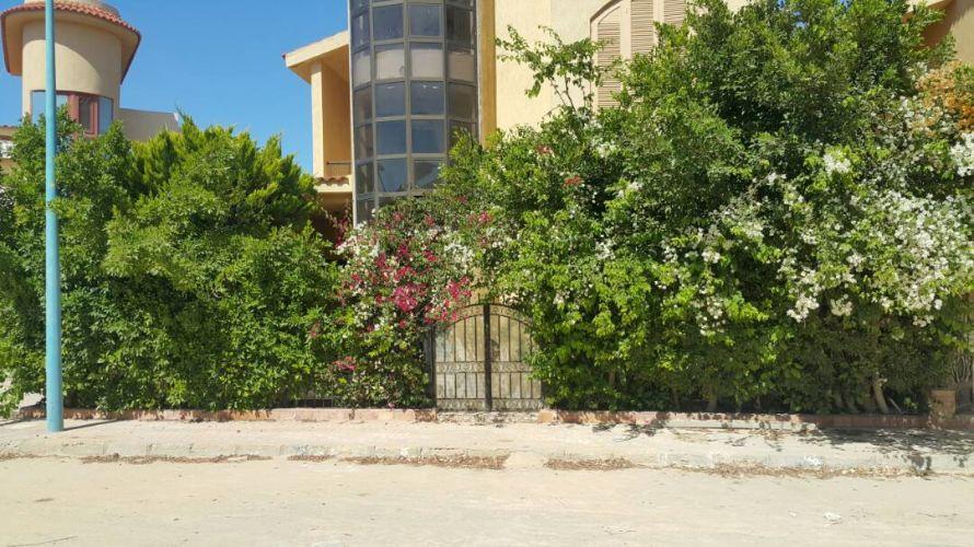 Properties/2974/eajmocwmzmyqd12n6j2s.jpg