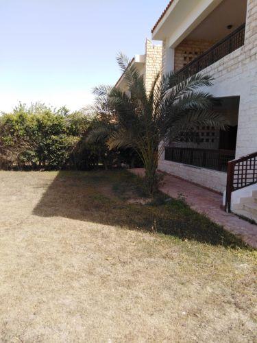Properties/4400/xw1ie1tuhysvffmooopf.jpg