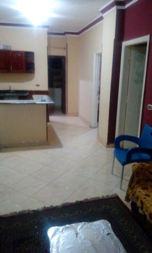 Properties/1131/qly56rgao1t1aed7z2my.jpg