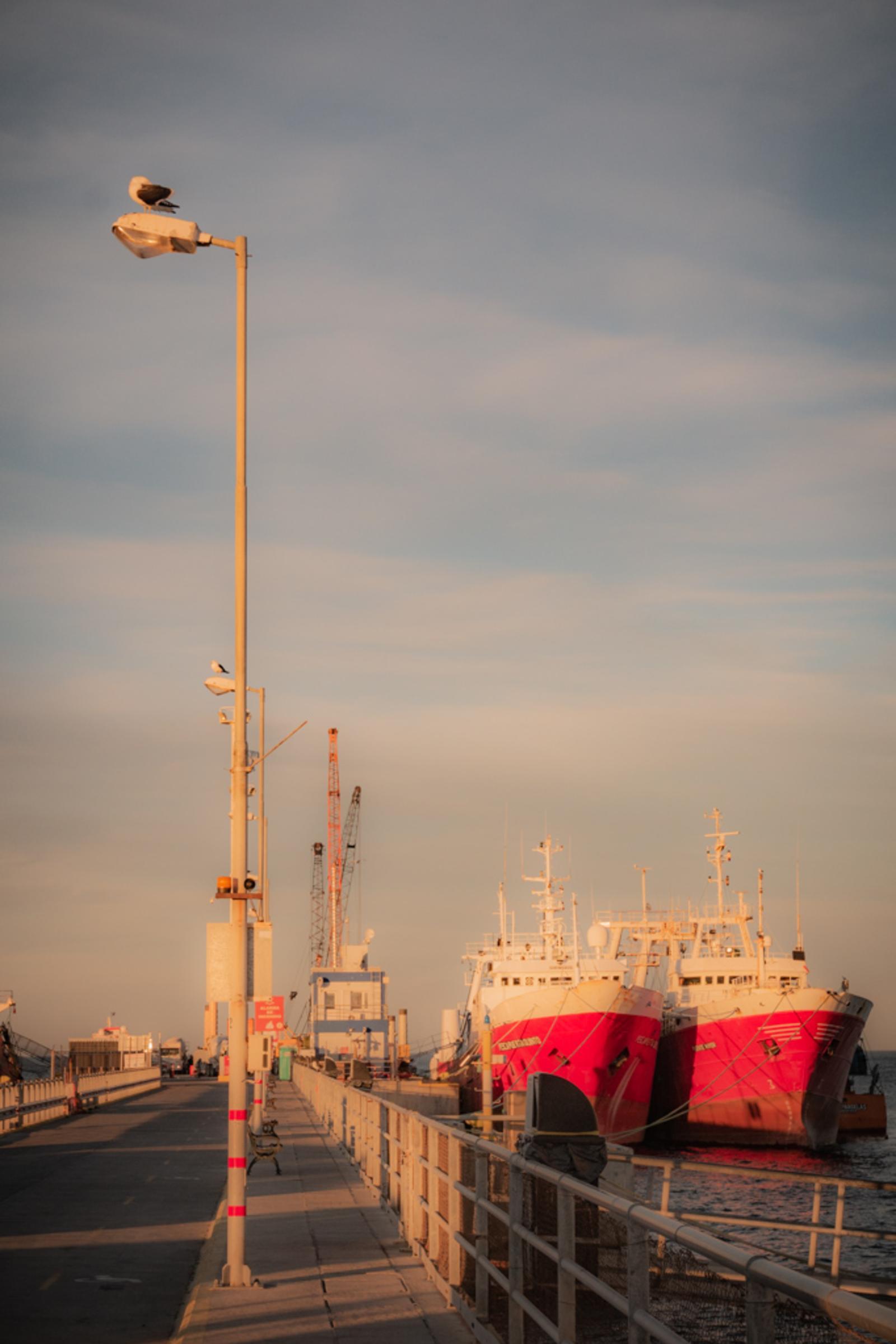 puerto IV