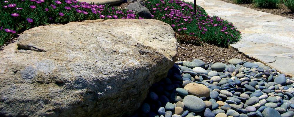 Decorative Beach Pebbles surround a boulder next to a flagstone walkway