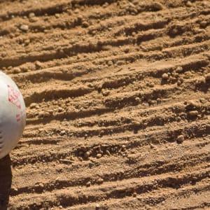 Infield Dirt Mix aka Baseball Infield Mix