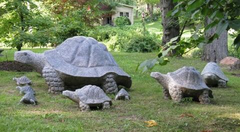 Stone Turtle Family