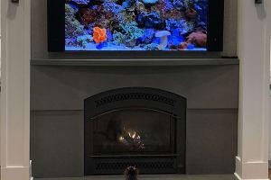 Custom Bluestone Fireplace Surround with Custom Bluestone Mantle