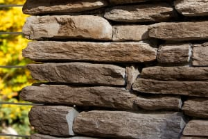 Asher Laurel Cavern Ledge