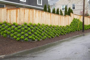 SmartSlopeLive Retaining Wall