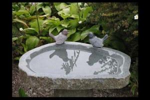 Birds Birdbath