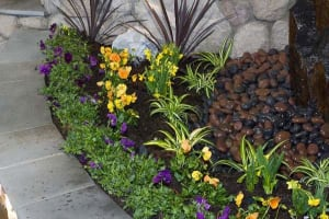 Mulch with  Accent Stone Mulching