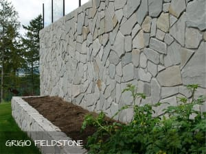 Pangaea Stone