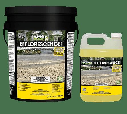 Efflorescence Cleaner
