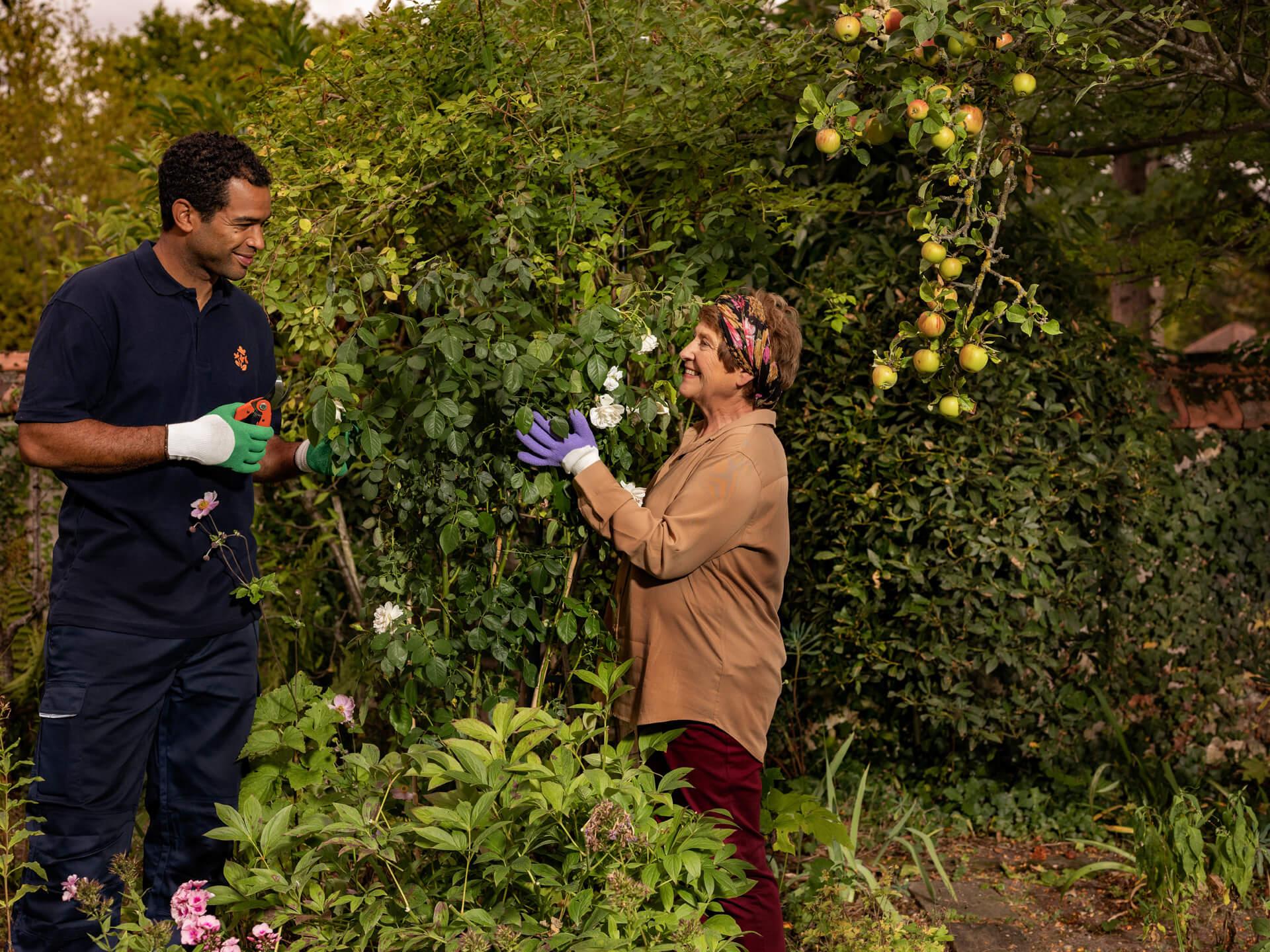 Homme Age d'Or aidant une femme âgée à jardiner