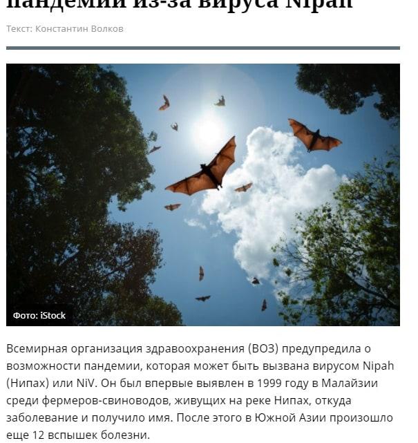 Россия угрожает миру новой пандемией вируса Nipah
