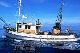 New Zealand fishermen