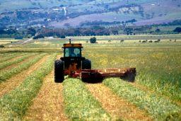 South Australia farmer