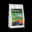 Okyspor TV Plus