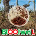 BIOOtwin L (Tignoletta)