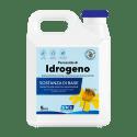 Perossido di idrogeno azione battericida, virucida e sporicida