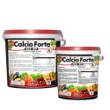 Calcio Forte 400 WP