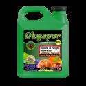 Okyspor BS