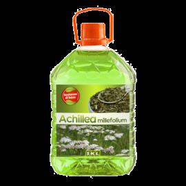 Achillea millefolium - millefolii_3d.png