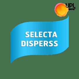 Selecta Disperss