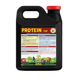 Foto Protein Top
