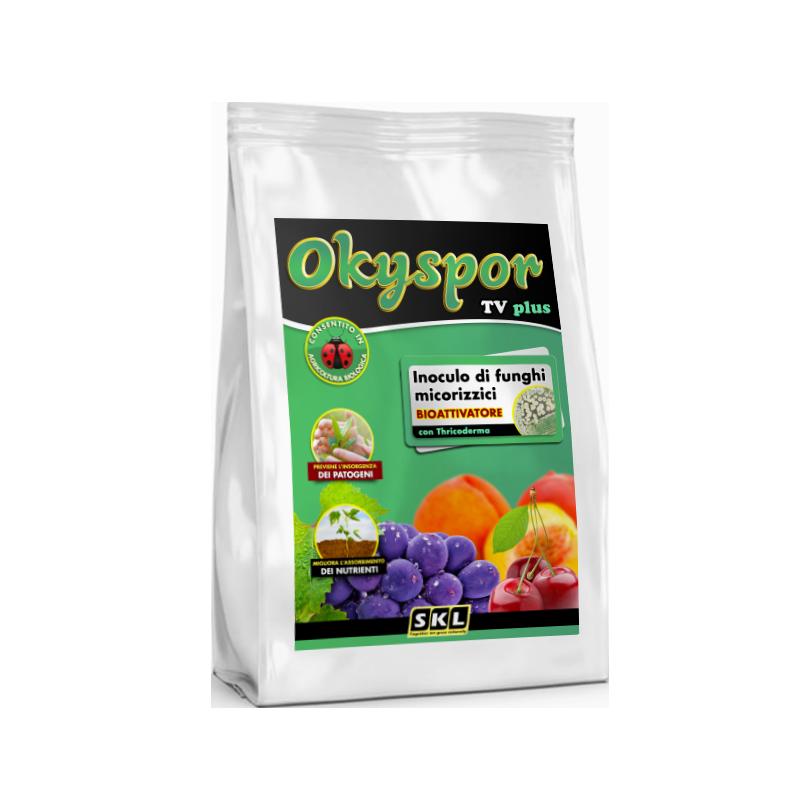 Foto di Okyspor TV Plus