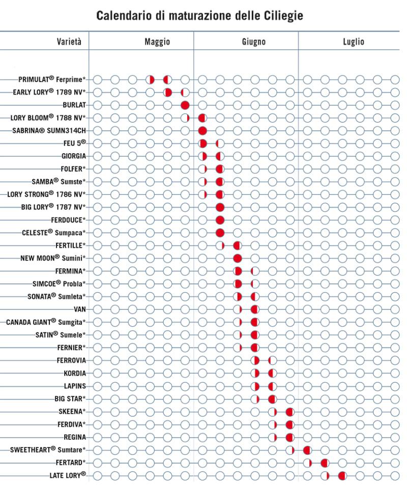 Trattamenti Ciliegio Calendario.Scheda Colturale Ciliegio Agrimag Info