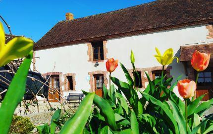 Gîtes des Barres  proches Beauval et Châteaux de la Loire