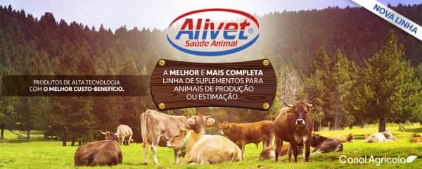 Conheça a nova linha de produtos veterinários do Canal Agrícola