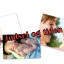 Gave fra Graviditet, fødsel & tiden etter