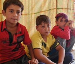 Help children fleeing war in Fallujah